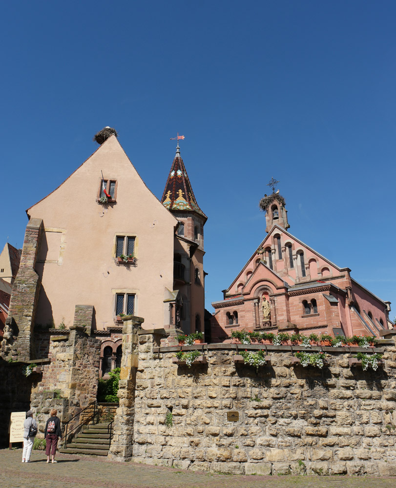 the storks of Eguisheim, France
